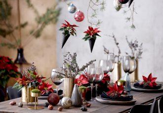 božićna zvijezda, dekoracije, diy, božićne dekoracije, uradi sam, crveno, uređenje stola